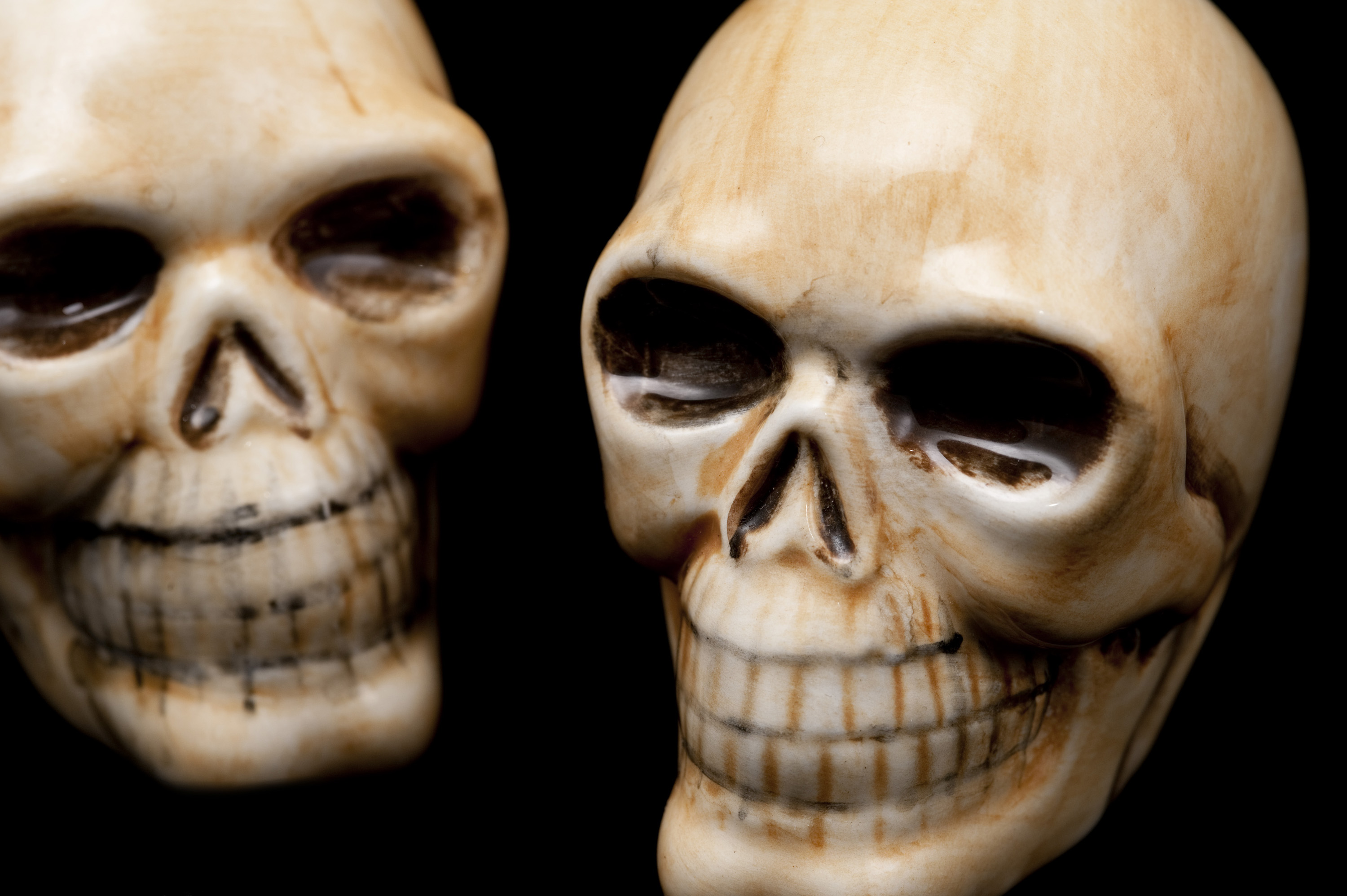 accept license and download image - Halloween Skulls Pictures