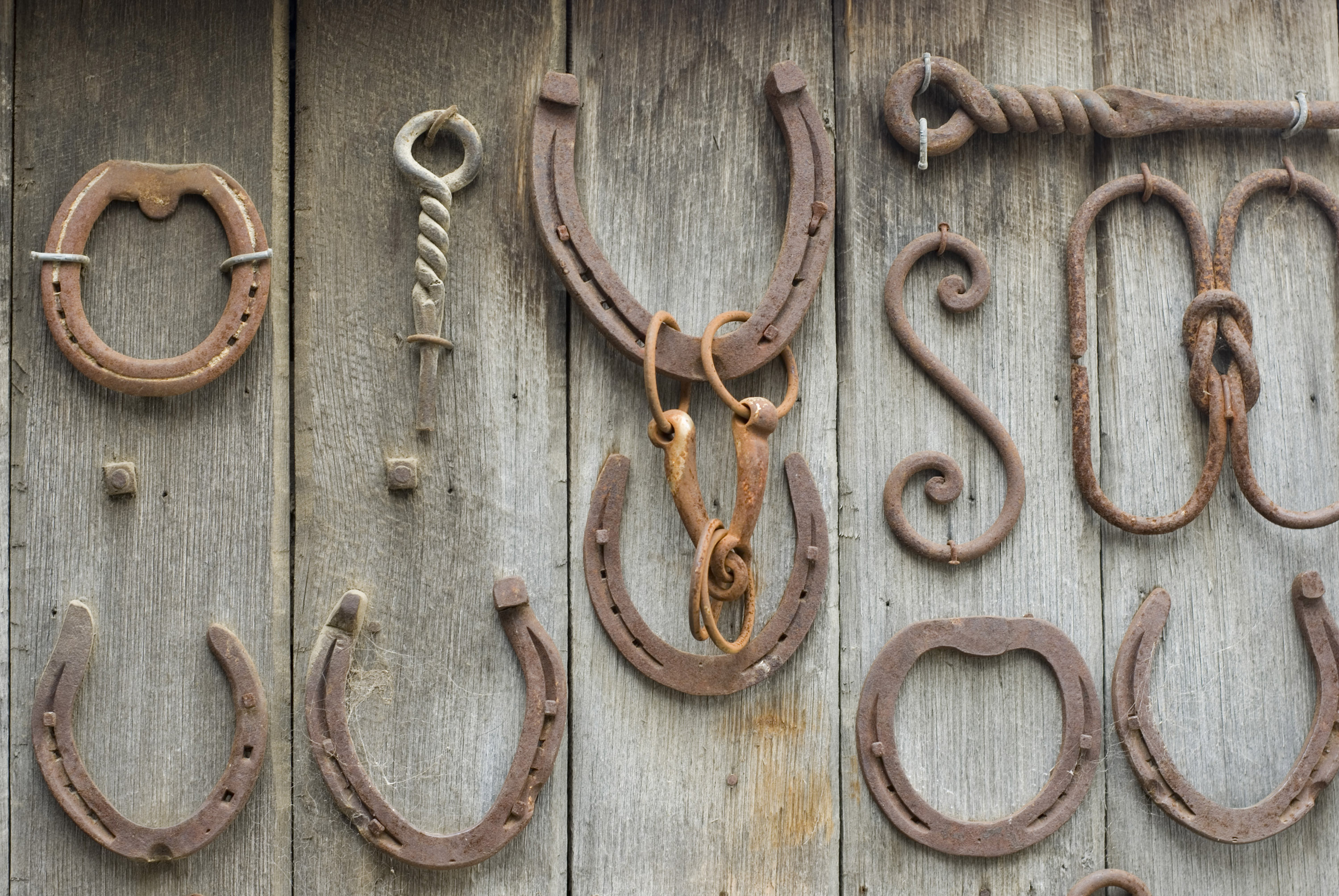 Horseshoes 3396 stockarch free stock photos for Where to buy used horseshoes