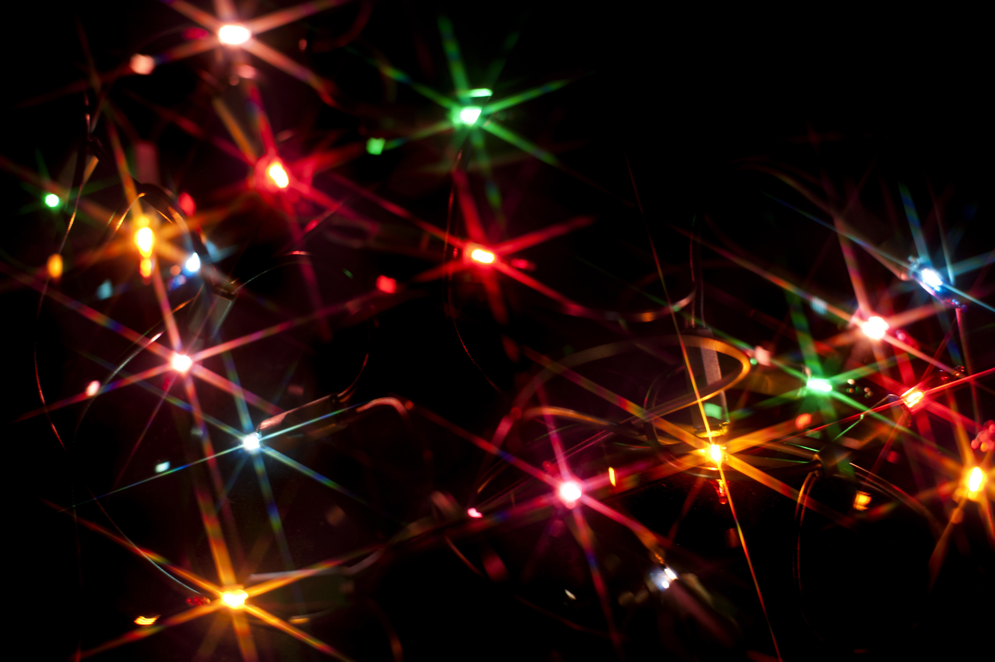 accept license and download image - Sparkling Christmas Lights