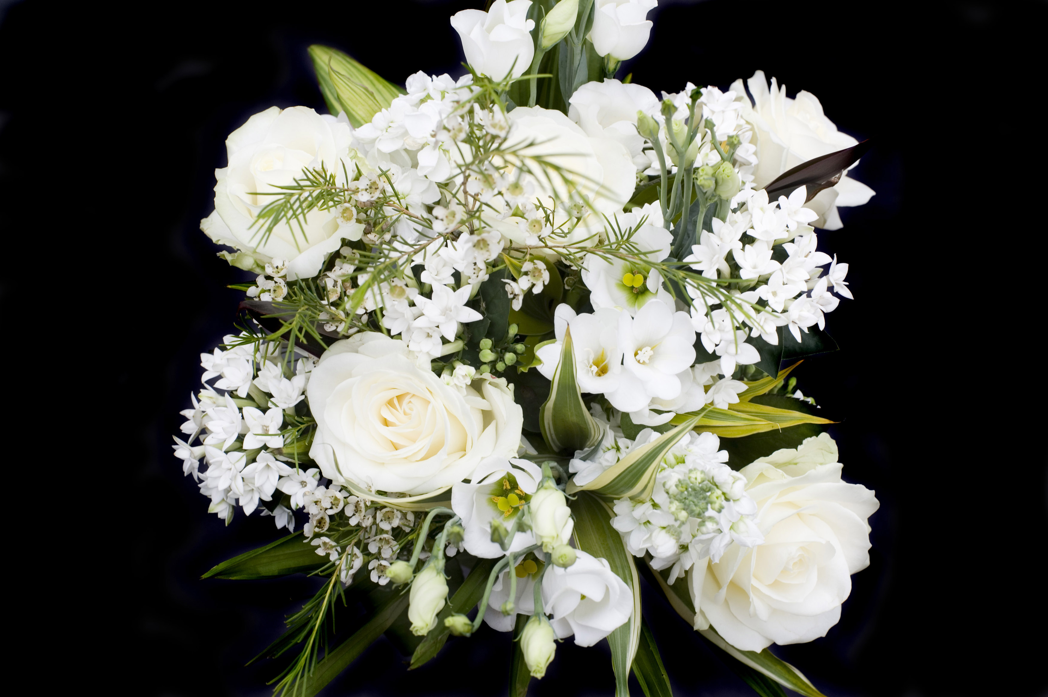 Overhead view of white bouquet on black background 9101 stockarch accept license and download image mightylinksfo