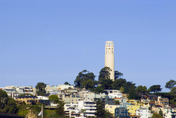 The coit tower memorial on top of one san franciscos hills, pictured on a sunnyday