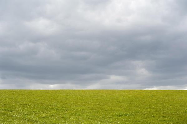 Empty Green Grassy Field-4092
