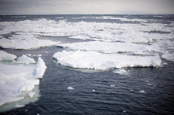 Sea of Okhotsk Ice-5582 | Stockarch Free Stock Photos