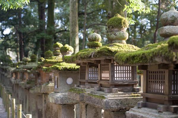 Japanese Stone Lanterns 5678 Stockarch Free Stock Photos