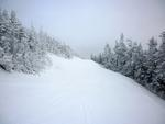 stock image woodland trail covered in deep snow
