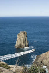 a scenic jetboat ride of the coast of cape hauy