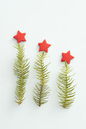 Christmas tree metaphor with three simplified trees of a single sprig of green pine foliage topped with a red star arranged in descending order over white with copyspace