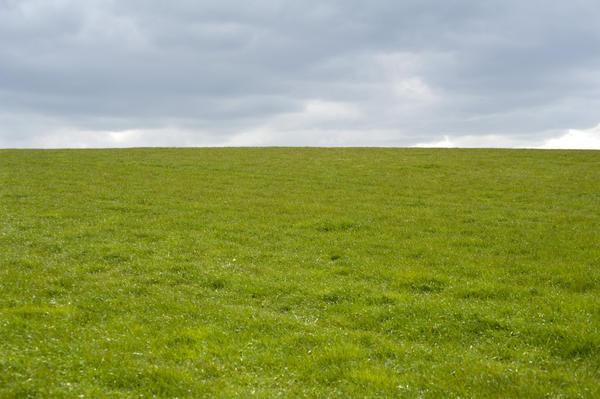 Green Field Under Cloud-3934